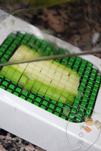 uso alligator (6)