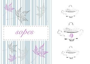 SOPES nov 2011