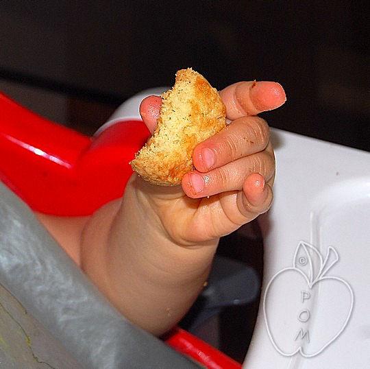 Polyanna y sus galletas para desayunar (10)