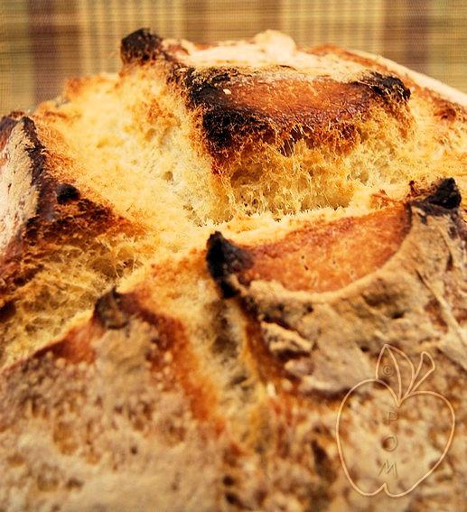 Pan de sémola de trigo (10)