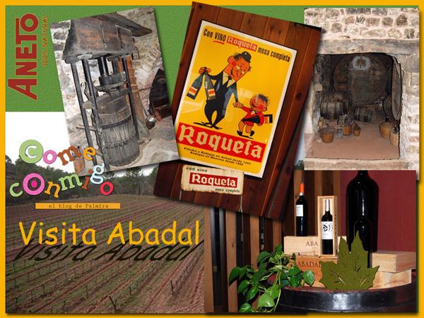 Visita Abadal600ccm