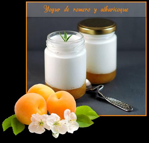 Yogur de Romero y albaricoque