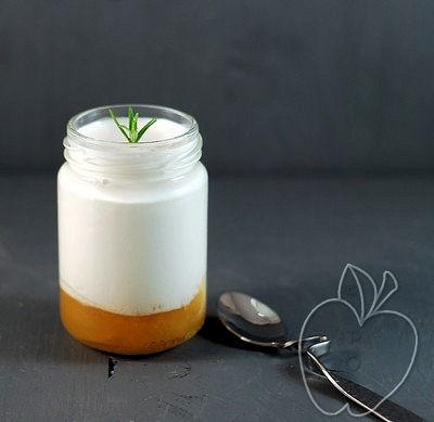 Yogur de Romero y albaricoque (6)
