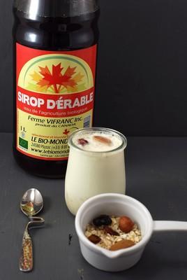 Yogur al estilo porridge (4)